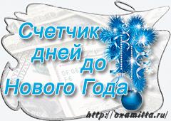 счетчик дней до нового года
